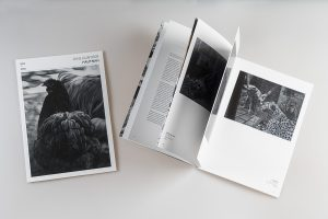 Katalog Hautnah